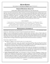 Business Analyst Sample Resume Resume Senior Business Analyst Resume Format Business Analyst 12