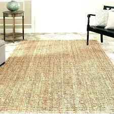 cleaning sisal rugs how to clean rug area clearance dog a how to remove pet urine stains from a sisal rug clean