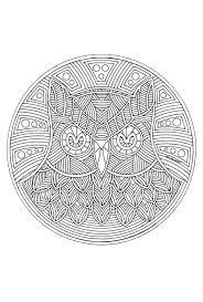 Mandala Uil