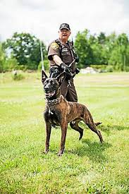Mike Garrison, a recently retired Oakland County Sheriff's deputy, dies  from COVID-19 | News | theoaklandpress.com