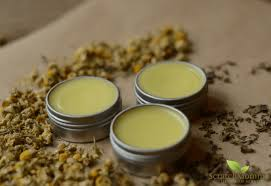 chamomile lemon balm ointment for cold sores recipe