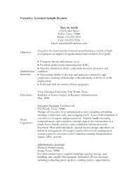 Night Auditor Description On A Resume Sample Resume For Hotel Night