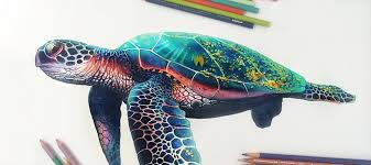 Small Picture Vibrant Pencil Drawings Bursting With Color by Morgan Davidson