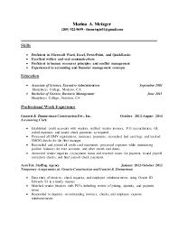Proficient Computer Skills Resume Sample Resume Sample