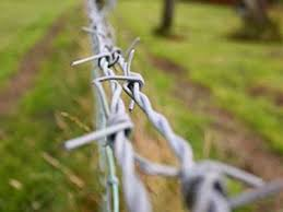 Galvanized Barbed Wire Sizes Single Strand And Double Strand