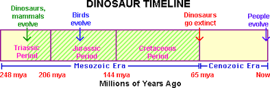 Era And Period Chart Mesozoic Dinosaurs Enchanted Learning Software