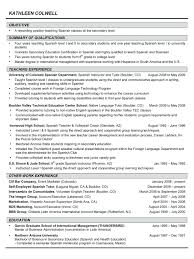 It Resume Writing Services Professional Resume Writing Service