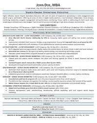 Search Engine Optimization Resume Example