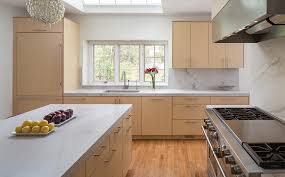 Flat panel doors with this real wood look give this kitchen a warm modern  feel.