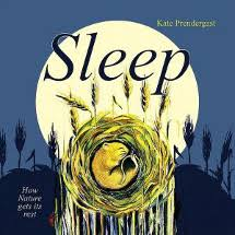 age 3 6 remended themes s sleep kate prendergast s non fiction picture book uses ilrations to show where s rest and sleep