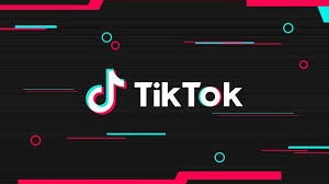 How to download TikTok in India on iOS ...