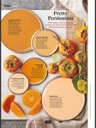 better homes and gardens paint. better homes and gardens pretty persimmon paint s