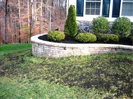 Small Picture How To Build A Garden Wall The Garden Inspirations
