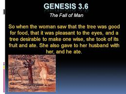 Image result for fall of man bible