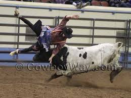 Image result for bull riding helmets collection
