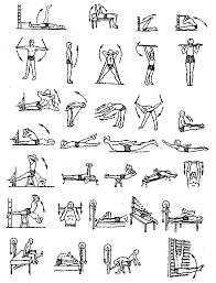 Физическая культура Учебник ВВЕДЕНИЕ Использование средств физической культуры