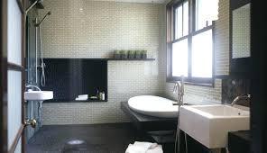 shower bath combination walk in bathtubs s large size of bathroom design ideas tub combo australia