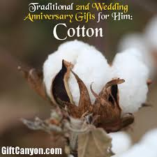2nd year cotton wedding anniverysary gifts for him