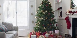How to Keep a Christmas Tree Alive | How To Keep A Christmas Tree ...