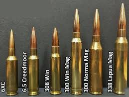 6 5 Creedmoor Vs 300 Win Mag Ballistics Chart 6 5 Creedmoor Vs 300 Winchester Magnum What Is Better
