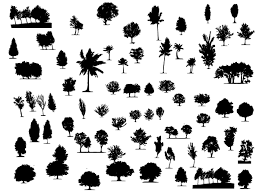 Large Collection Of Free Trees And Foliage Vector Shapes Graphic