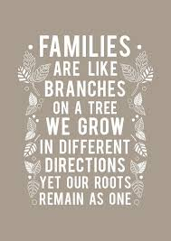 Family Time Quotes Fascinating Quotes Quotes On Family Time