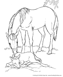 Horse Coloring Pages Printable Mare And Her Sleeping Foal Coloring