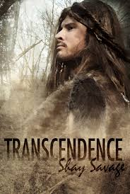 Transcendence (2014) HD Watch Widescreen