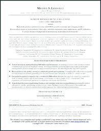 Sample Cfo Resume Resume Example Executive Templates Sample Cfo ...