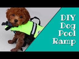 diy dog pool ramp how to build