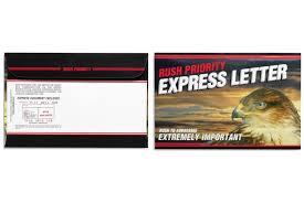 Overnight Next Day Express Rush Priority 6X9 Envelopes Hawk Eagle Head FB