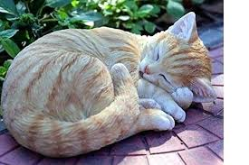 cat garden statue. Cat Garden Statue Statues For A And Lawn This Summer Inside