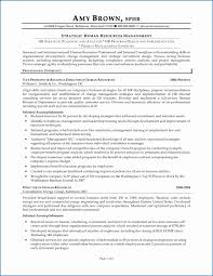 Business Management Resume Examples Awesome Resume Dds