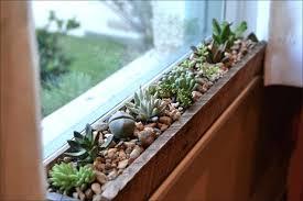 indoor window garden window plant shelf awesome kitchen ideas indoor window herb garden window sill decorating