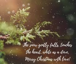Best Christmas Cards Messages Quotes Wishes Images 40 Inspiration Christmas Quotes For Cards