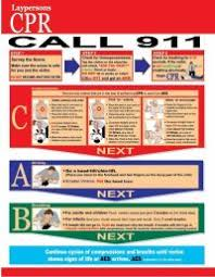 Cpr Charts Downloadable 2013 Cpr Chart Pictures To Pin