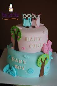 Baby Shower Ideas For Boy And Girl Baby Shower Themes For Twins Twin Boy And Girl Baby Shower Ideas