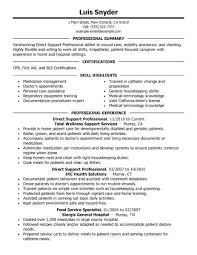 Example Of A Professional Resume For A Job Professional