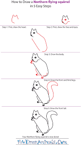 Small Picture How to Draw a Northern Flying Squirrel