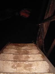 dark basement stairs. It Was Basement-stairs Dark Basement Stairs