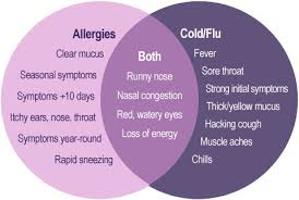 5 Ways To Tell The Difference Between Allergies & A Cold - Welcome ...