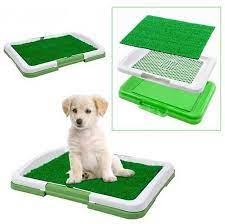 Petpretty Çimli Köpek Eğitim Tuvaleti 45x32x4cm - Petsepette