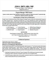 Director Resume Samples Education Program Director Resume Hr Manager ...
