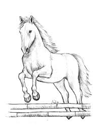 Cavalli Da Disegnare Facili Avec Disegni Da Colorare Dei Cavalli