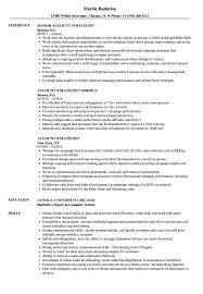 Digital Strategist Resume Account Strategist Resume Samples Velvet Jobs