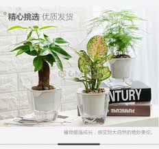 office planter. Indoor Home Office Self Watering Planter Plant Plastic ABS Flower Pot A
