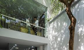 office tree. Symbiosis Office Building, Cong Sinh Architects, Green Space, Vietnam, Renovation Tree