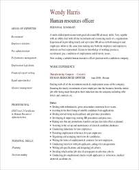 It Professional Summary Examples Fascinating Lovely Sample Resume For It Companies 48 Sample Professional Summary