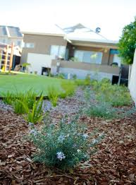 Small Picture Perth Landscaping Blog Landscape Design Advice Landscaping Tips