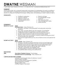 Salon Resume Example Salon Resume Examples Examples Of Resumes 15